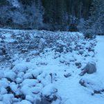 blog_herzogkante_winter_25