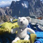 Kleiner Bär auf großem Berg